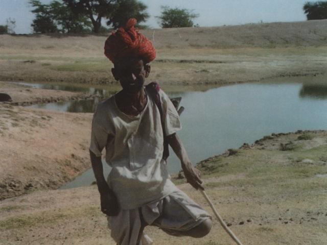 Marwari herder